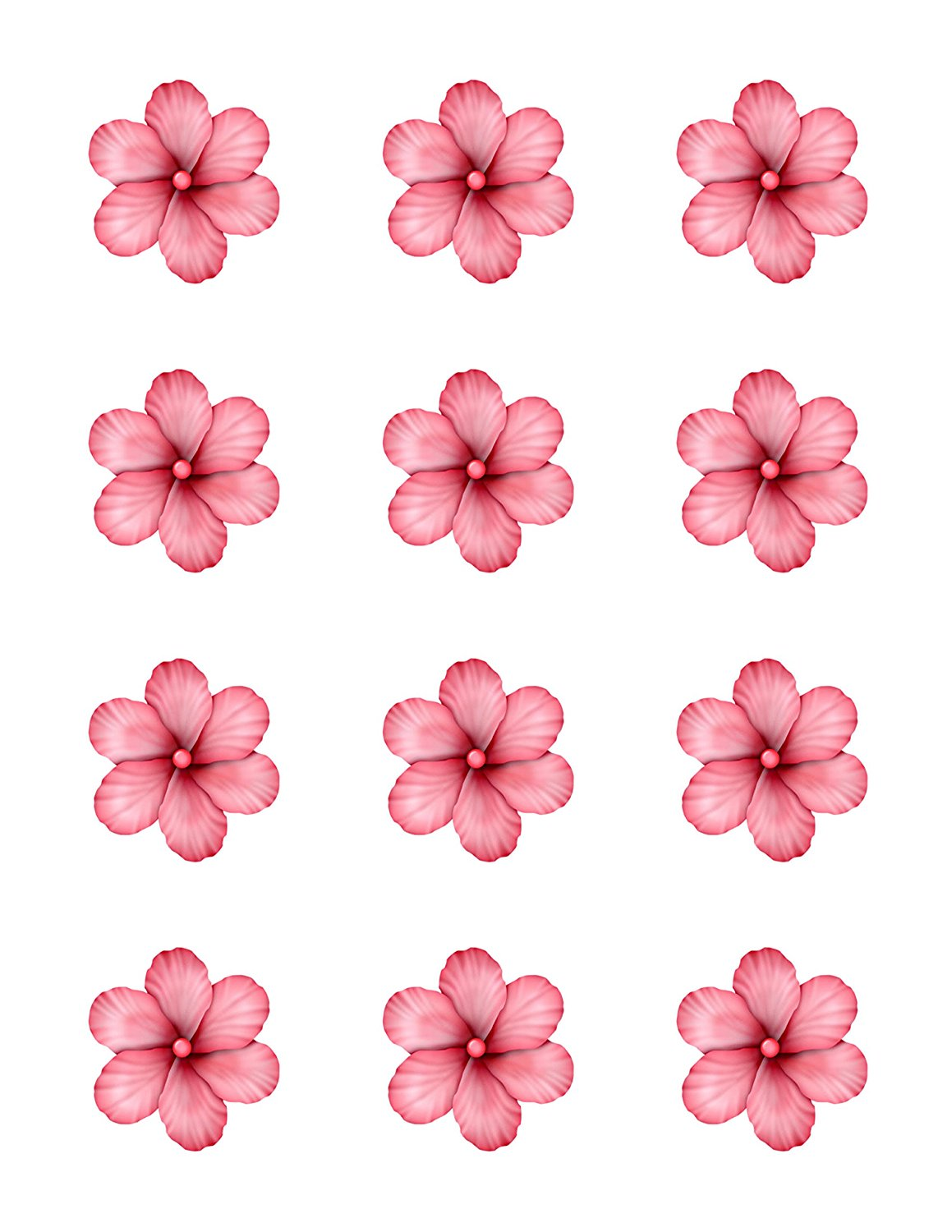 Light pink hibiscus flowers edible image cupcake toppers set of light pink hibiscus flowers edible image cupcake toppers set of 12 precut 2 round flower adventures izmirmasajfo